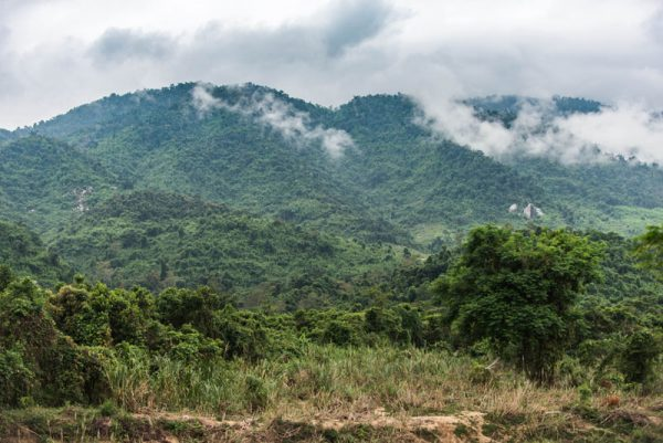 эко парк храм хон до альфа турс экскурсии нячанг вьетнам (10)