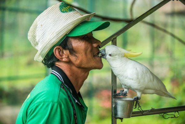 эко парк храм хон до альфа турс экскурсии нячанг вьетнам (19)